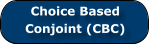 Choice Based     Conjoint (CBC)